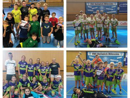 DragonCUP 2020 - MILEVSKO